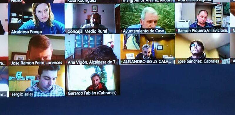 Declaración de la FACC sobre la gestión del lobo en Asturias